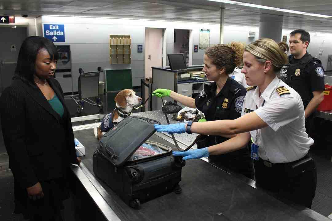 Comment faire sa valise comme une hôtesse de l'air ?